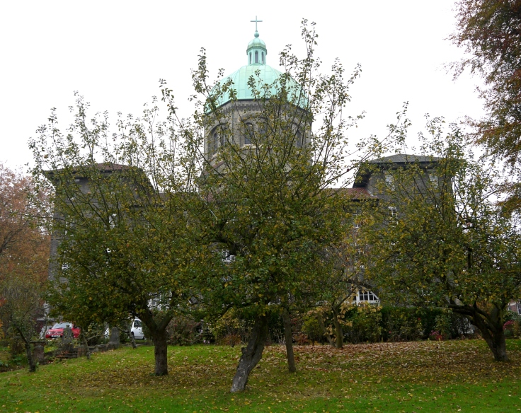 Orchard with St Josephs monastery and church