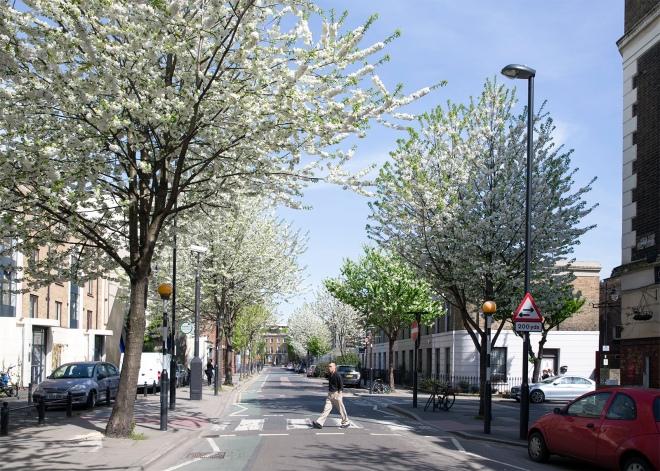 Wharfdale Road in flower