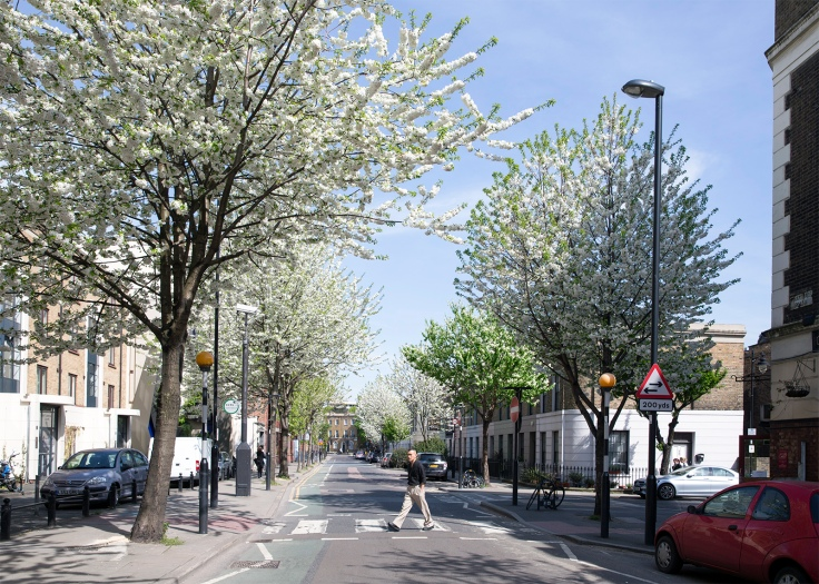 Wharfdale Road in flower